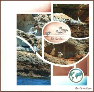 SeagullspageBeCreativa