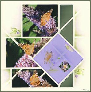 ButterfliesFlocrap95