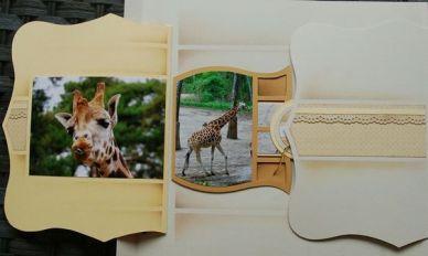 Giraffefront0